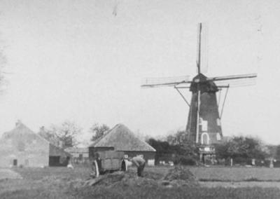 Korenmolen De Hoop - oude molen